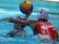 Currie_Cup_waterpolo_Durban_2014_FINAL_Ladies_WP_vs_CG (5)
