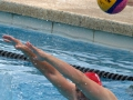 Currie_Cup_waterpolo_Durban_2014_WP_18_vs_OFS_Mens (19)