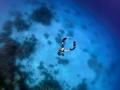 Amanzi_Magazine_J_de_vos_Going-Down_Red-Sea