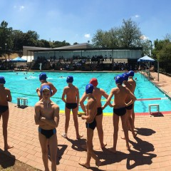 Western Province Water Polo – showcase high quality school boy waterpolo in Johannesburg
