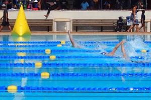 Western Province Aquatics carnival 2015 swim event