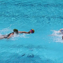 SA 2014 Ladies Fina Women's World Cup Water Polo Team to prove their metal.