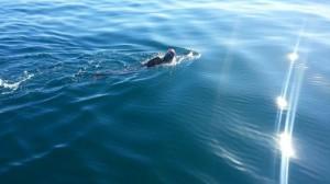 amanzi_magazine_arafat_gatabazi_swims_robben_island_swim (5)