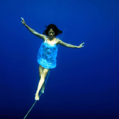 The Master Switch of Life – the science of freediving