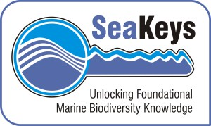 SeaKeys National Research Foundation project