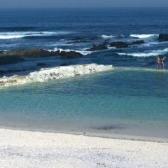 Top 10 Tidal Pools in Cape Town