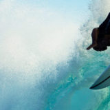 Ecoboards – The Future of Sustainable Surfing
